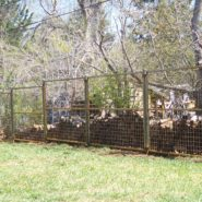 Tiered fence
